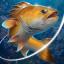 Fishing Hook 2.4.2 (Unlimited Money)