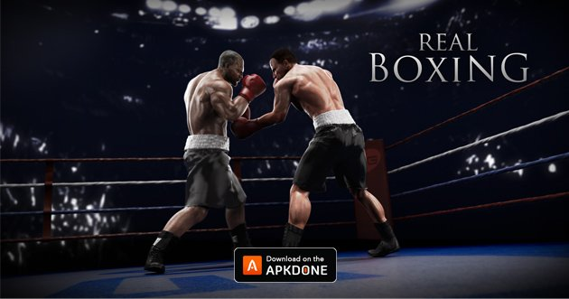 Real Boxing poster