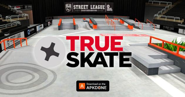 True Skate poster