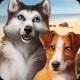 Dog Hotel 2.1.10 (MOD Unlimited Money/Unlocked)