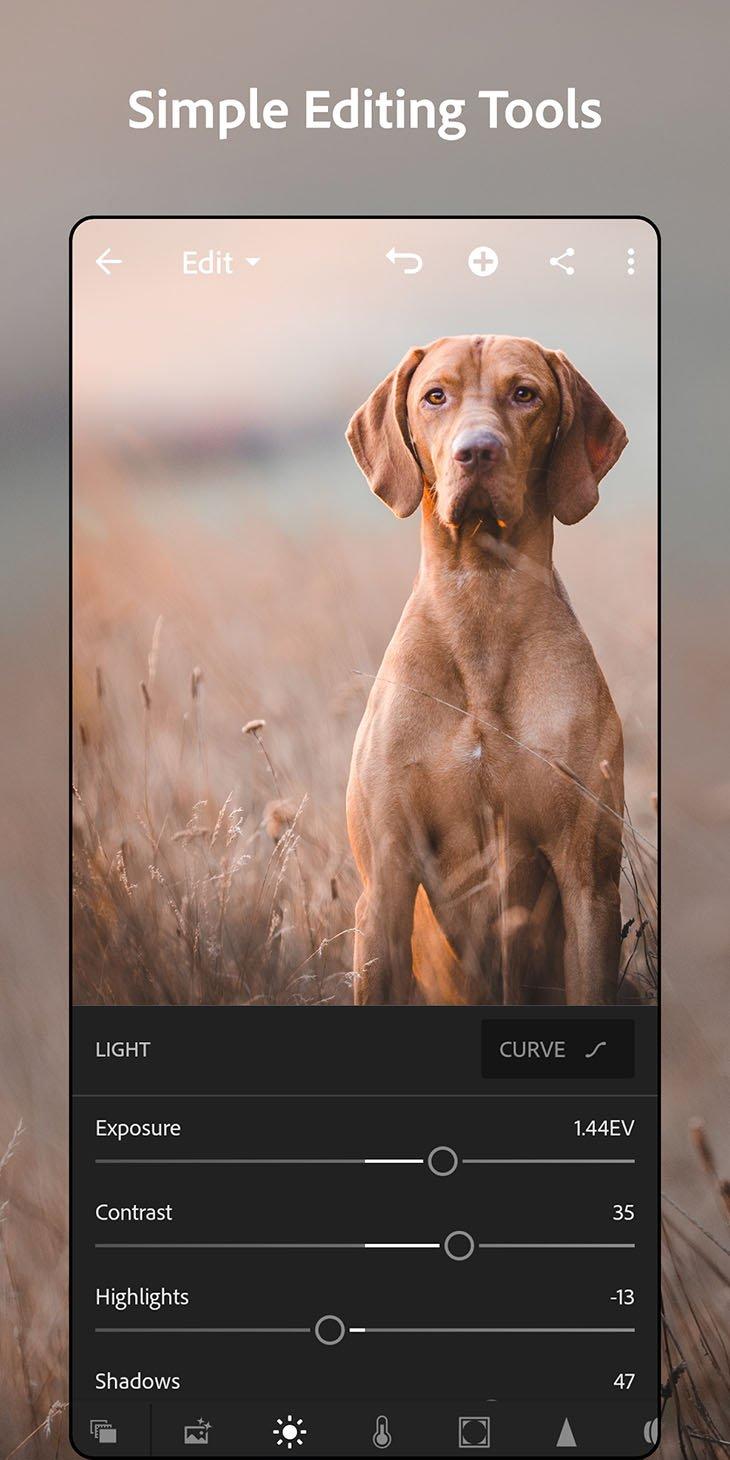 Ảnh chụp màn hình Adobe Lightroom