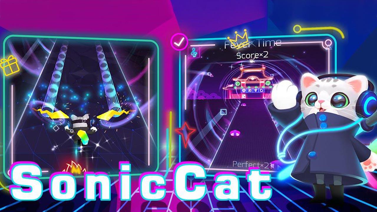 Sonic Cat poster