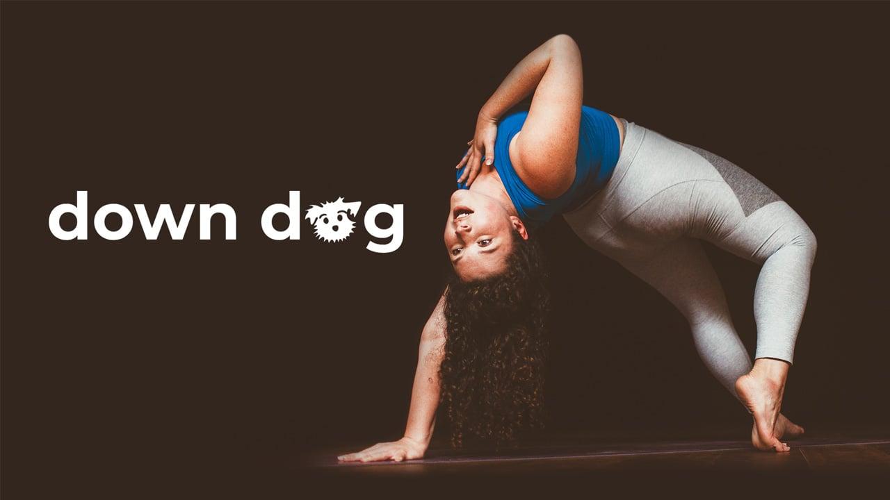 Yoga Down Dog poster