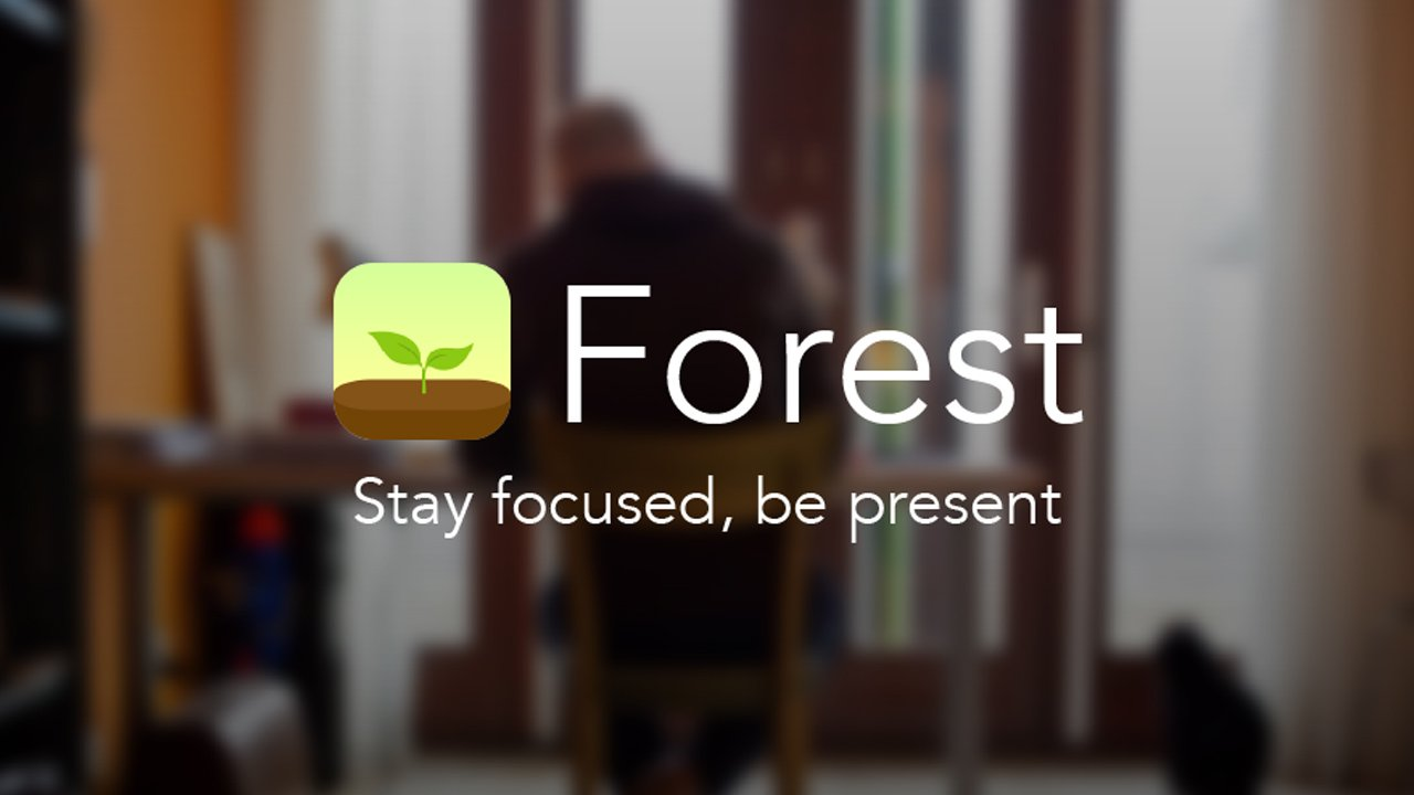 Forest Stay focused poster