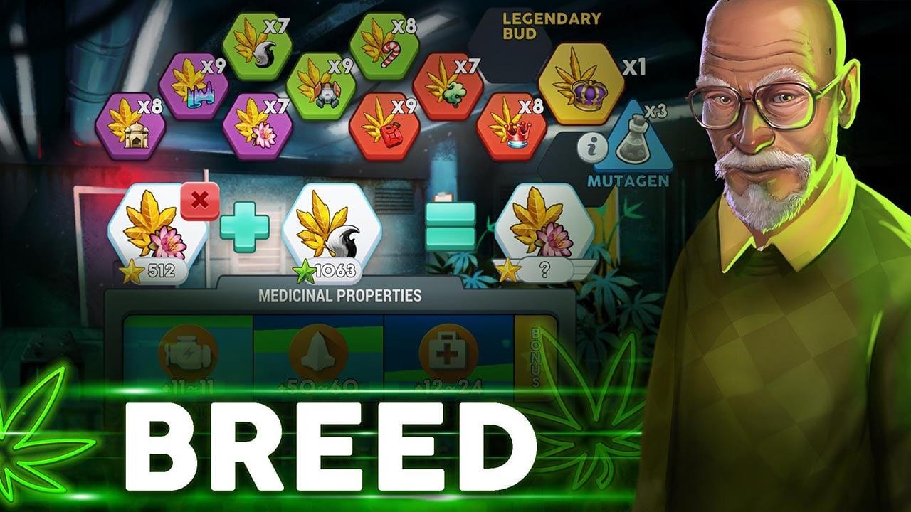Hempire Plant Growing Game screen 3