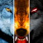 Wolf Online 3.5.0 (Unlimited Points)