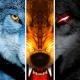 Wolf Online MOD APK 3.5.0 (Unlimited Points)