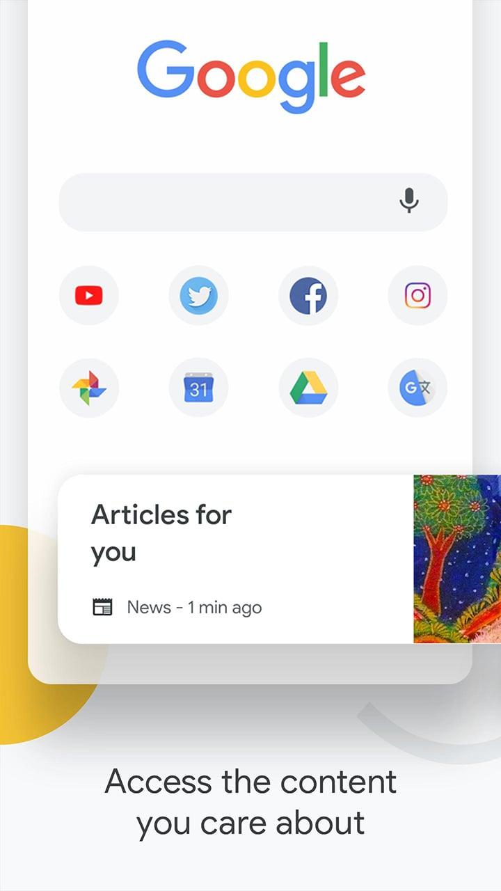 Google Chrome screen 0