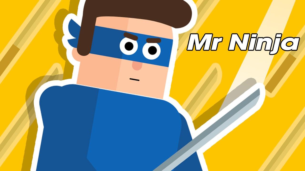 Mr Ninja poster