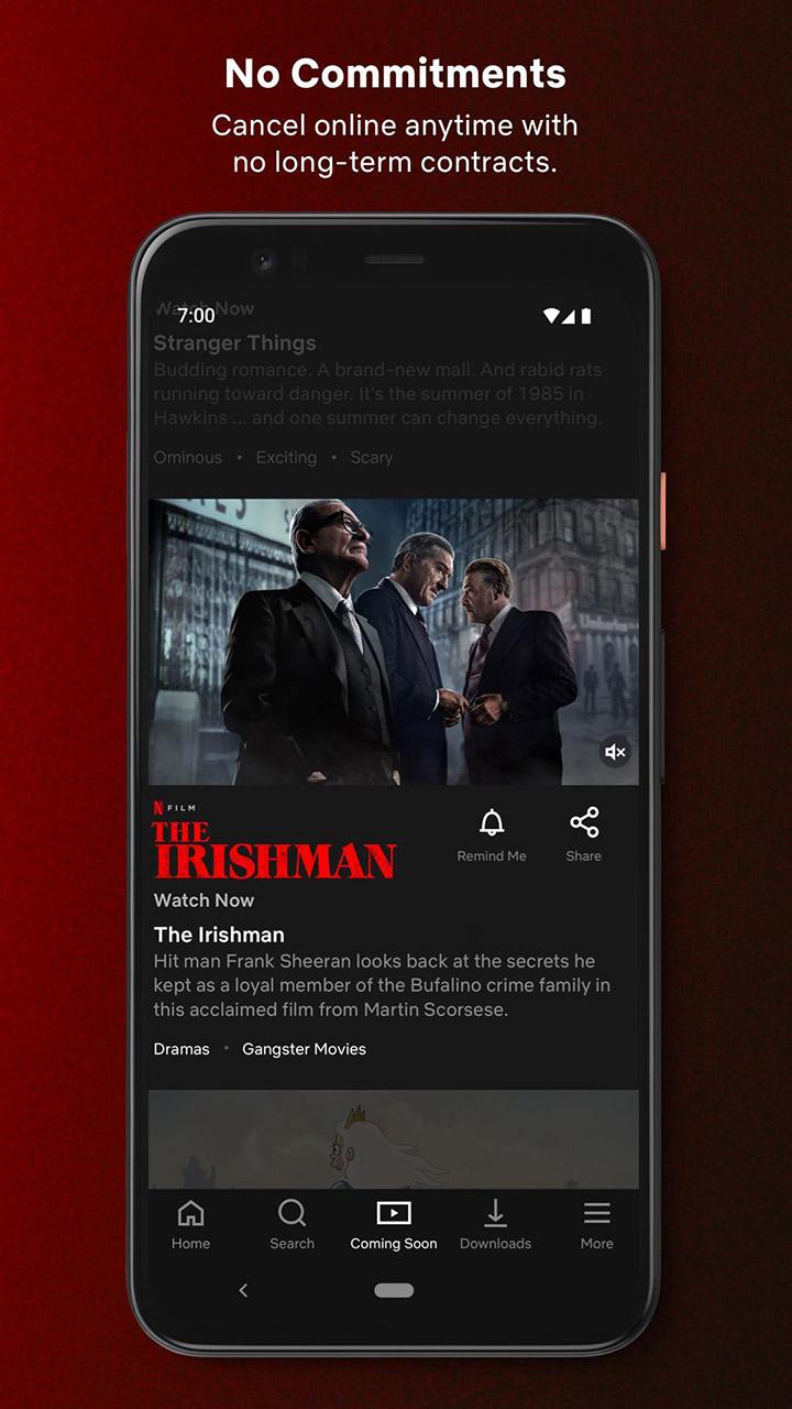 Netflix screen 4
