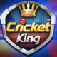 Cricket King APK 2.1.1.38