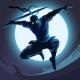 Shadow Knight MOD APK 1.5.17 (God Mode)